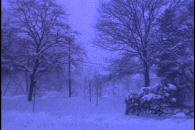 whistler blizzard 000132;11