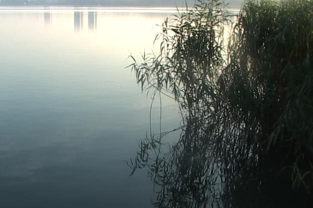 xuanwu lake 1
