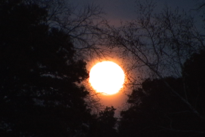 moon still