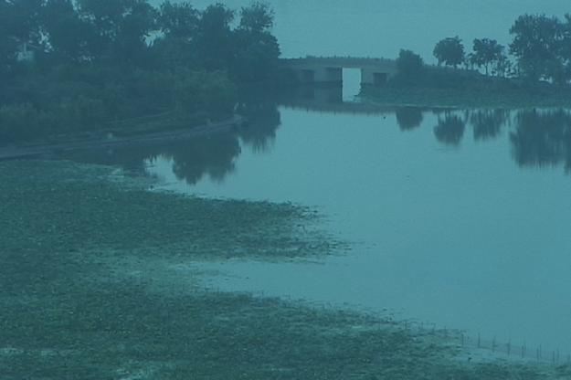 x lake